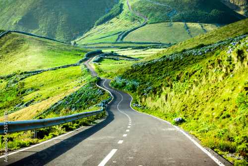 Poster Lime groen Azores landscape: Endless curvy winding road through the hills of Flores island, the Azores, Portugal.