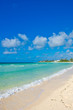 Tropical Beach - Blue Sky and Sand.