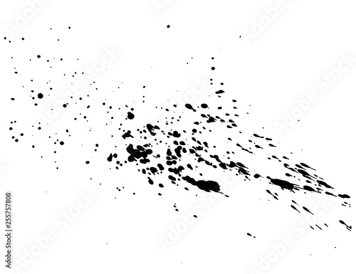 Abstract black ink splash watercolor, Splash watercolor spray texture isolated on white background. Vector illustration. Wall mural