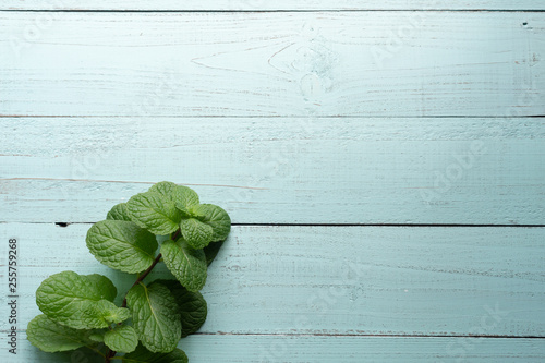 Obraz Bundle of freshly harvested wild Mentha aquatica or Water mint on wooden surface of old oak table with copy space - fototapety do salonu