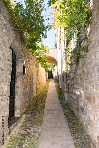 Picturesque alley in the medieval village