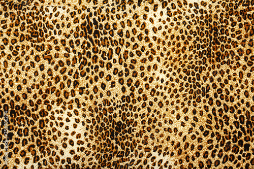 Poster Leopard Leopard skin pattern texture. Leopard texture background. Animal print. Leopard fur texture.
