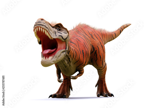 Fotomural Tyrannosaurus rex, T-rex dinosaur from the Jurassic period (3d rendering isolate