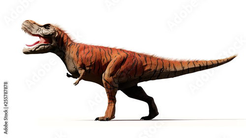 Fotografie, Obraz  Tyrannosaurus rex, T-rex dinosaur from the Jurassic period (3d render isolated w