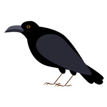 Black Crow Flat Illustration