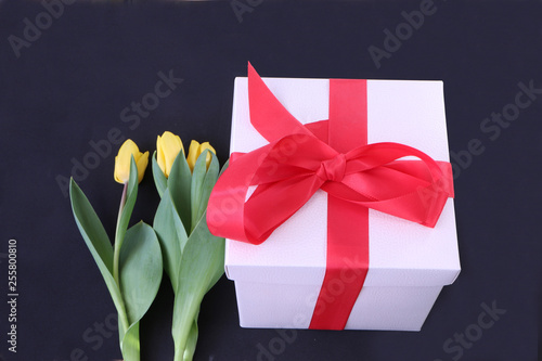 Foto auf AluDibond Tulpen Close-up - a yellow tulip lying on a gift box