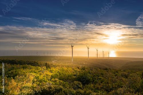 Photo Energía eólica en parque eólico al atardecer con turbinas eólicas
