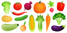 Cartoon Vegetables. Fresh Vegan Veggies, Raw Vegetable Green Zucchini And Celery. Lettuce, Tomato And Carrot Vector Illustration Set