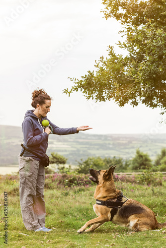 Obedience dog training session outdoor Canvas-taulu