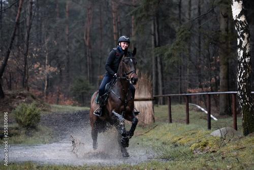 Acrylic Prints Horseback riding Wasserausritt
