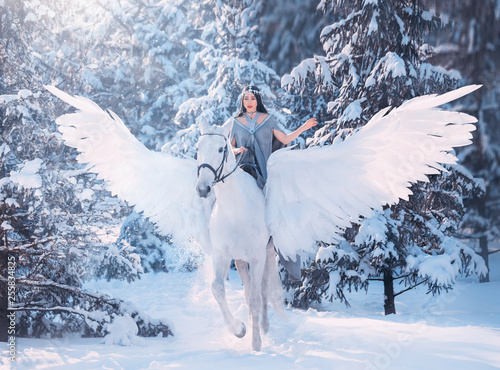 Stampa su Tela cute sweet sad lady on horseback with gorgeous soft light wings, white pegasus i