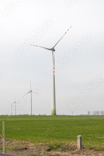 Fotografia  Windmills on a wind farm