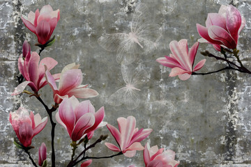 Fototapeta3d wallpaper, magnolia flower on concrete wall textured background. The original panel will turn your room in with the most recent world trends in interior fashion.