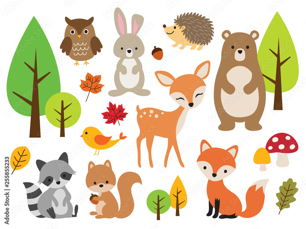 Fototapeta Vector illustration of cute woodland forest animals including deer, rabbit, hedgehog, bear, fox, raccoon, bird, owl, and squirrel.