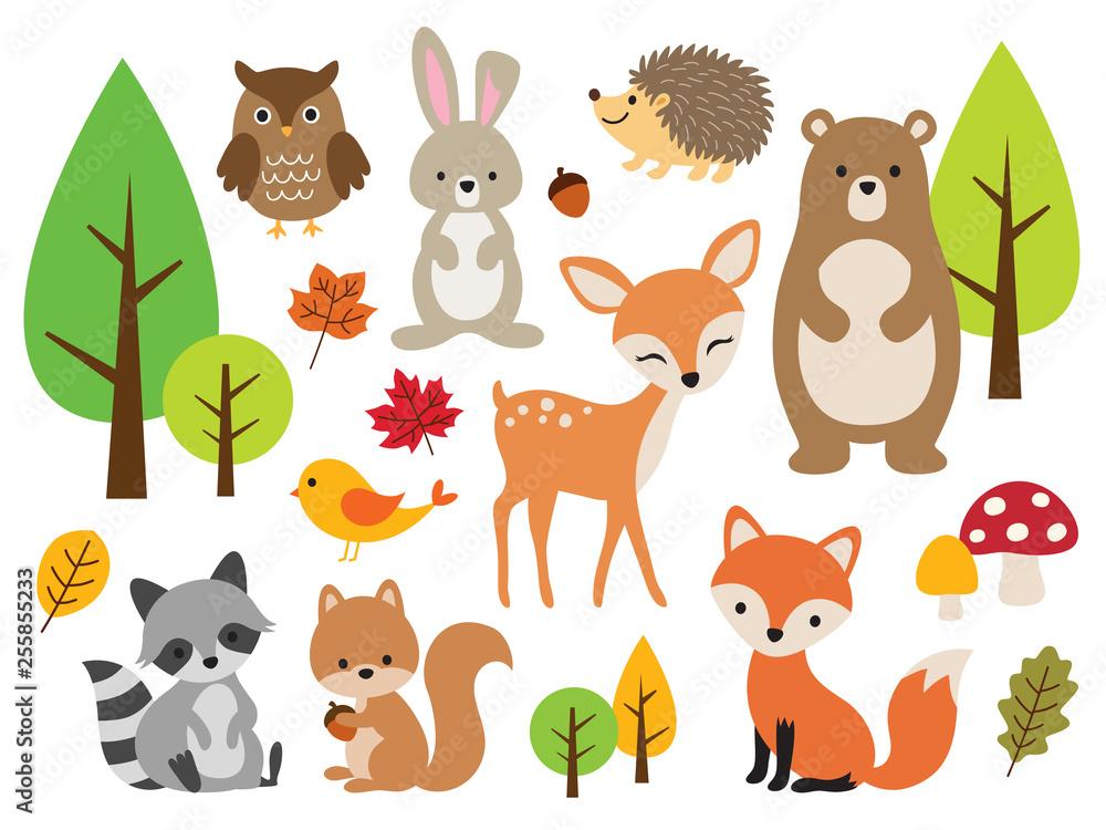Fototapety, obrazy: Vector illustration of cute woodland forest animals including deer, rabbit, hedgehog, bear, fox, raccoon, bird, owl, and squirrel.