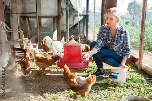 Carta da parati Young woman farmer caring for poultry