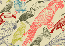Parrots And Toucans. Tropical Birds. Seamless Vector Background.