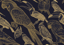 Seamless Vector Background. Parrots And Toucans.