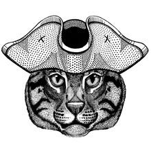 Fishing Cat Wearing Pirate Tricorn Hat. Capitan Costume.