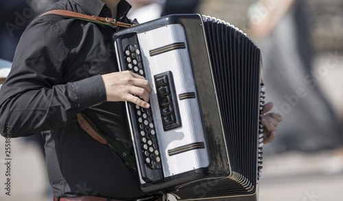 playing the accordion Tapéta, Fotótapéta