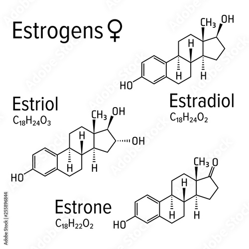 Estrogens vector chemical formulas. Estradiol, estriol and estrone female steroid harmones. Chemical molecular model.