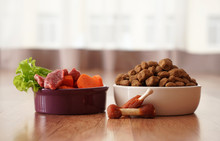 Bowls With Dry And Fresh Pet Food On Floor