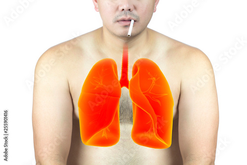 man smoking cause lung degeneration and cancer - Buy this