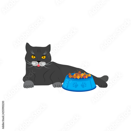 Printed kitchen splashbacks Cats Cute cat near the bowl with cat feed. Vector illustration isolated on white background.