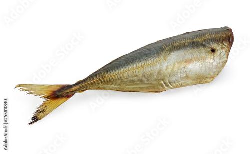 Valokuva  Smoked Atlantic horse mackerel without head on a white background