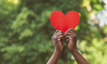 Black Hands Holding Red Paper Heart On Green Background