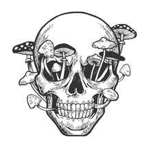Human Skull And Mushroom Sprou...