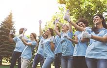 Group Of Happy Volunteers Cele...