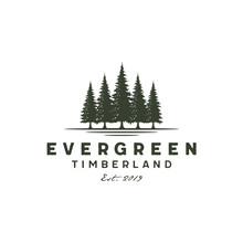 Rustic Retro Vintage Hemlock, Evergreen, Pines, Spruce, Cedar Trees Logo Design