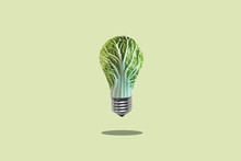 Green Energy For Human Health. The Concept Of Ecology And Vegetarianism. Green Leaf Lettuce In A Light Bulb
