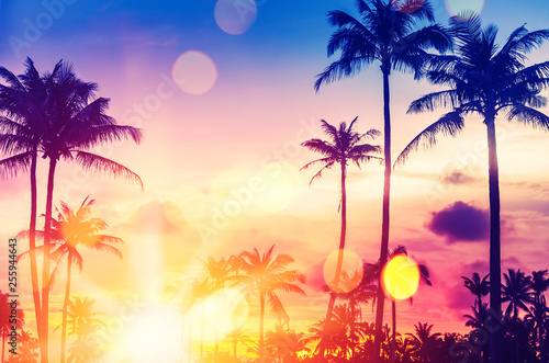 Deurstickers Strand Tropical palm tree with colorful bokeh sun light on sunset sky cloud abstract background.