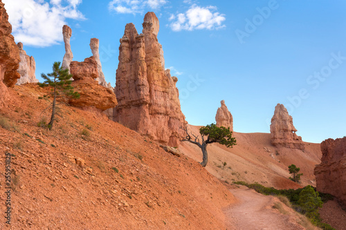 In de dag Koraal landscape on the bryce canyon in the united states of america