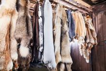 Manufacture Of Fur Animals In ...