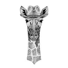 Camelopard, Giraffe Wearing Cowboy Hat. Wild West Animal. Hand Drawn Image For Tattoo, Emblem, Badge, Logo, Patch, T-shirt