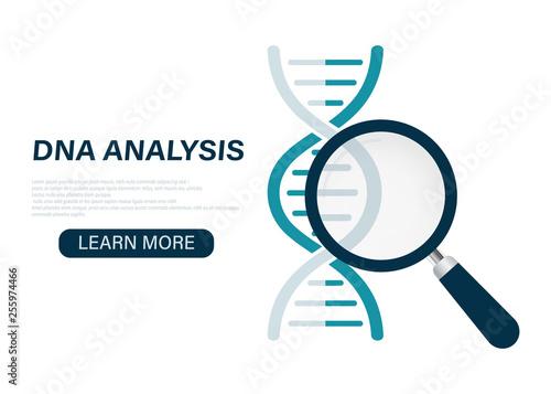 Fotografie, Tablou DNA analysis icon, genetics testing