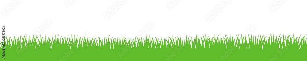 Fototapety, obrazy: Gras Hintergrund wiederholend