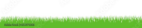 Obraz Gras Hintergrund wiederholend - fototapety do salonu