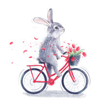 Easter Bunny Riding A Bicycle