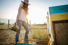 Woman Beekeeper Holds Smoker W...