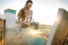 Woman Beekeeper Kneels To Pour Smoke On Bee Hive Box