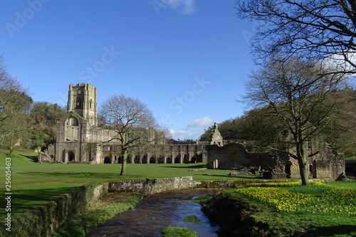 Ancient abbey ruins in England Canvas Print