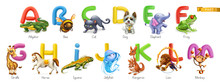 Zoo Alphabet. Funny Animals, 3...