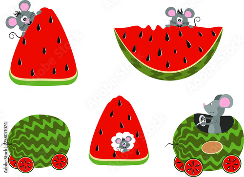 Foto op Canvas Draw Sweet and ripe watermelon, which is eaten by mice. Concept of harm to agriculture by rodents
