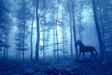 Magiczny mglisty las z działającym koniem