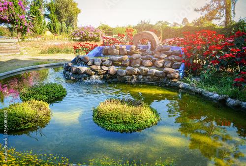 Fotografía beautiful pond water garden landscape pond design small waterfall stone with pla