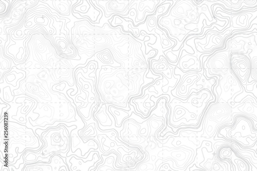 Fotografía  Abstract Blank Detailed Topographic Contour Map Subtle White Vector Background